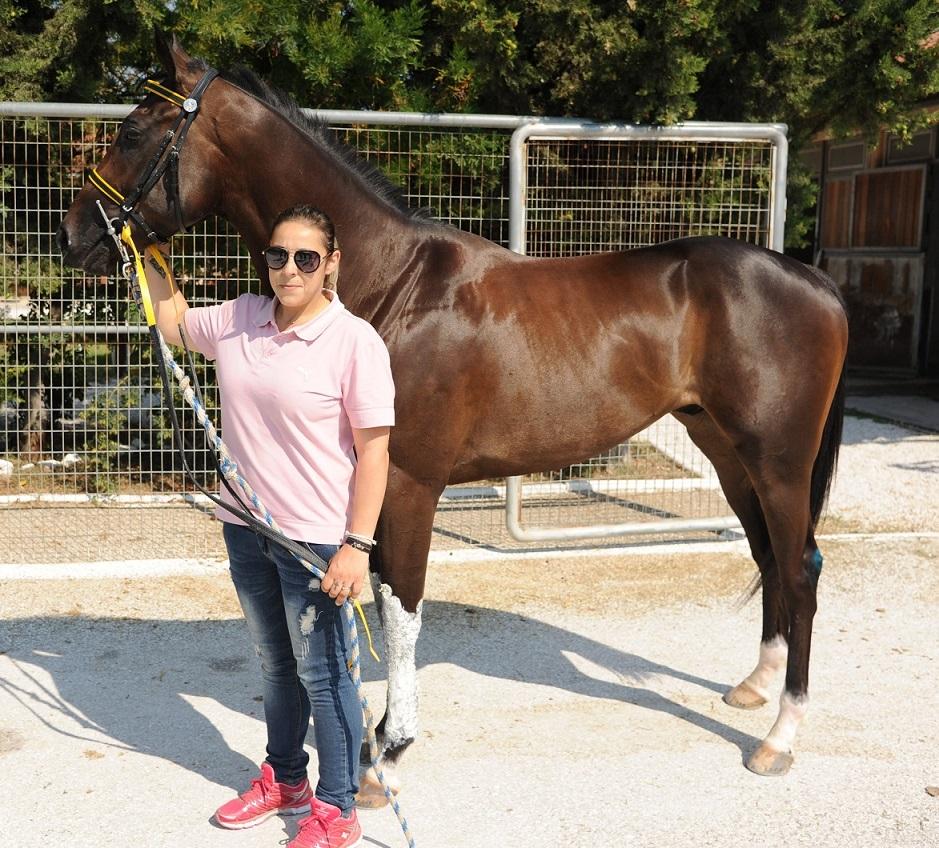 Επτά ιπποδρομίες και «μάχες» γένους θηλυκού σήμερα στο Μαρκόπουλο – Μπρα ντε φερ Καβρουλάκη-Κεράτσα
