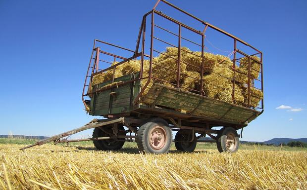 Και οι αγρότες στη ρύθμιση των 120 δόσεων!
