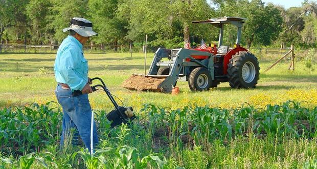 Το Πρόγραμμα Αγροτικής Ανάπτυξης 2014-2020 πέτυχε τους στόχους του Πλαισίου Επίδοσης της Ε.Ε. με τη μέχρι σήμερα επιτυχημένη πορεία εφαρμογής του