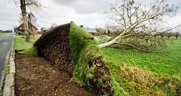 Η καταιγίδα «Φρειδερίκη» σαρώνει Γερμανία, Ολλανδία, Βέλγιο – Έξι νεκροί (βίντεο)