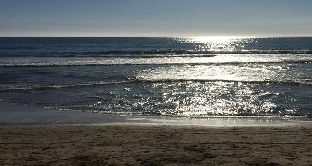 Καθάρισαν εντελώς οι ακτές και οι θάλασσες…