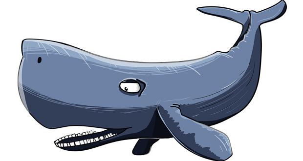 Πάντως η φάλαινα φυσητήρας, που βρέθηκε νεκρή σε ακτή της Σαντορίνης…