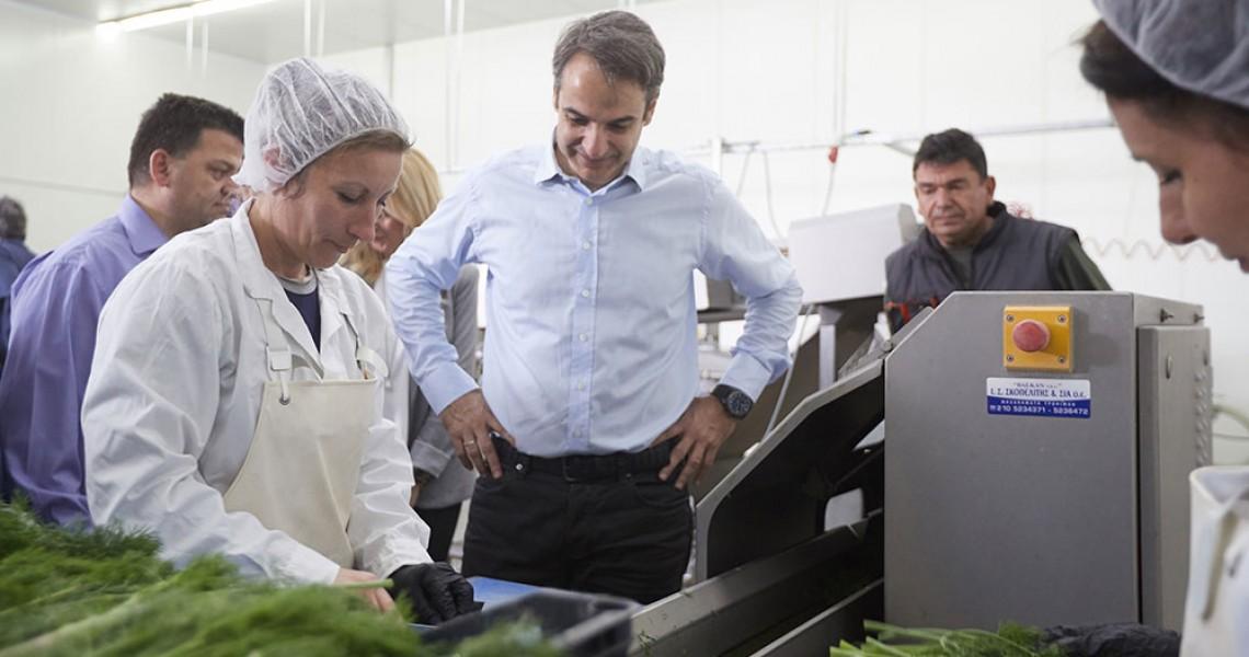 Μητσοτάκης: Θα στηρίξουμε την επιχειρηματικότητα ειδικά στον πρωτογενή τομέα
