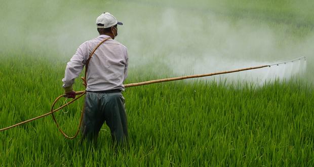 Οικολόγοι Πράσινοι: Να ανακληθούν από την αγορά τα ζιζανιοκτόνα με glyphosate