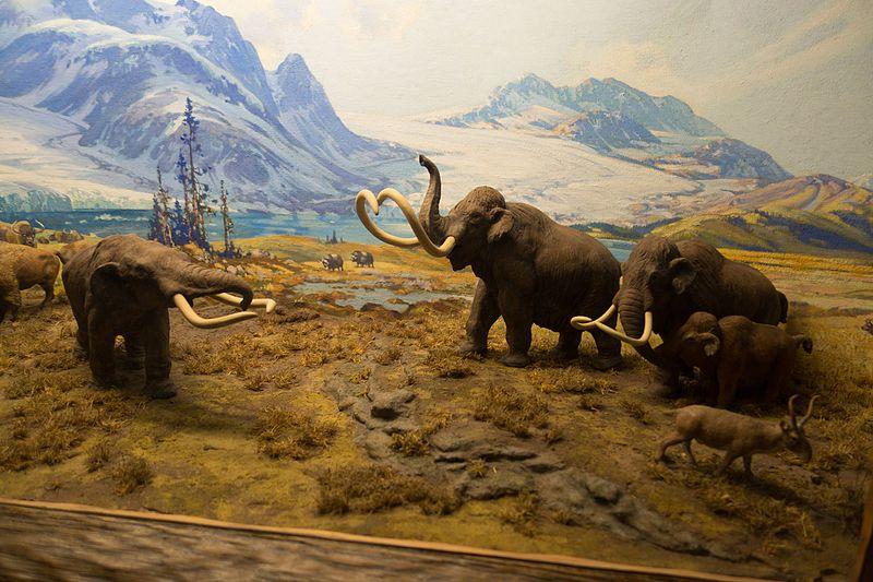 Σκηνές κυνηγιού στις οποίες απεικονίζονται τρία μαμούθ ανακάλυψαν αρχαιολόγοι…