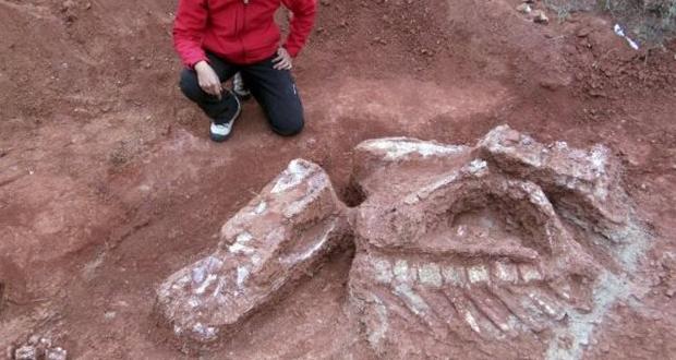 Ομάδα ερευνητών ανακάλυψε στην Αργεντινή τα υπολείμματα από ένα είδος τεράστιου δεινόσαυρου…