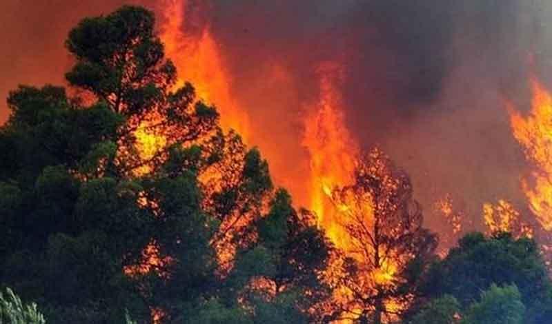 Μαίνεται ανεξέλεγκτη η πυρκαγιά στα Γεράνεια Όρη