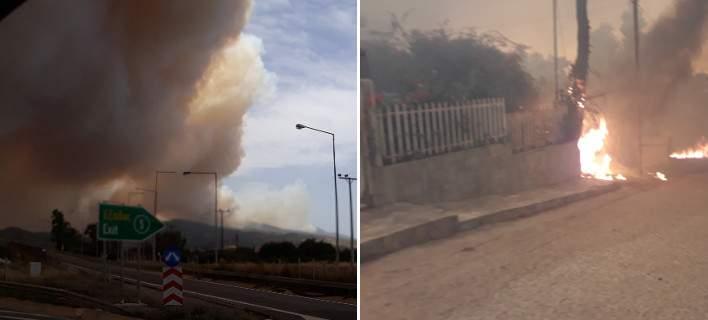 Μεγάλη φωτιά στην Κινέτα – Εκκένωση κατοικιών (εικόνες & βίντεο)