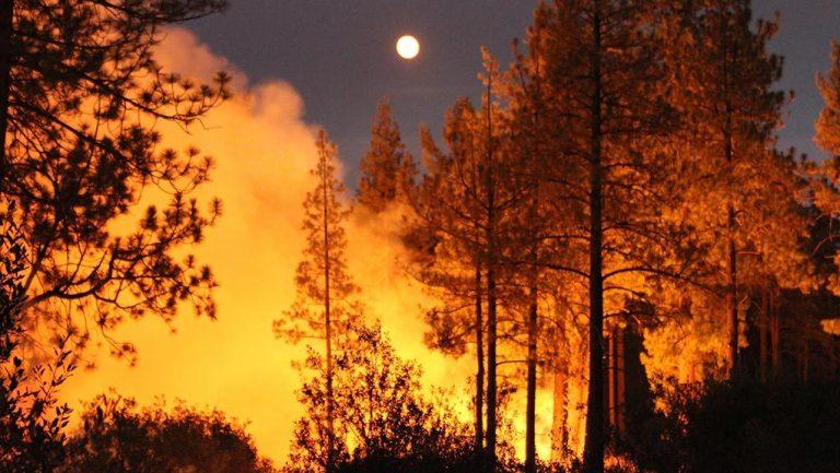 Μεγάλες δασικές πυρκαγιές στην Καλιφόρνια