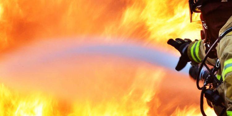 ΑΠΙΣΤΕΥΤΟ! Απαγορεύουν ενέργειες πρόληψης των πυρκαγιών στα δάση