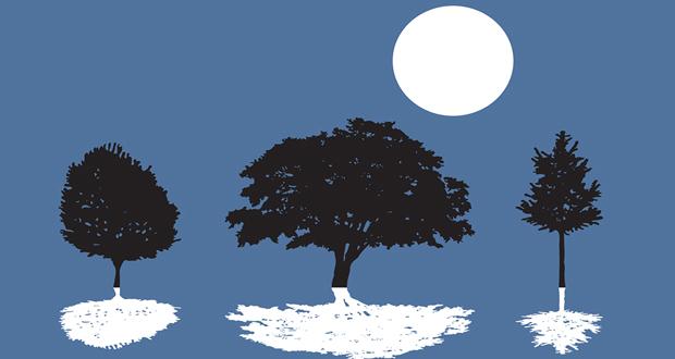 Ημέρες φθινοπώρου- Νύχτες πολιτισμού – Ιωνικές Γιορτές στο Αλσος Νέας Σμύρνης