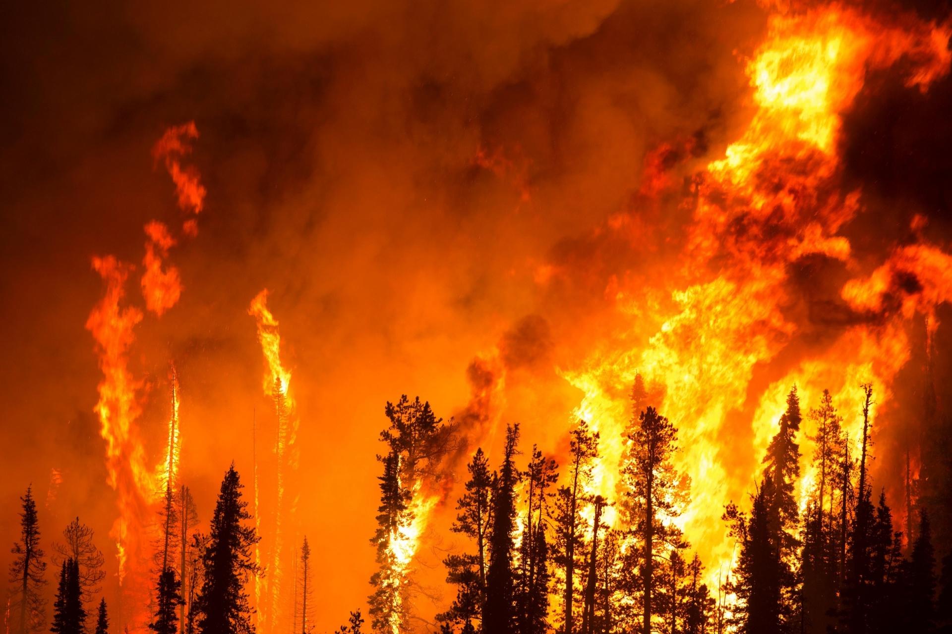 Γ.Γ.Πολιτικής Προστασίας: Βίντεο με οδηγίες για τις δασικές πυρκαγιές