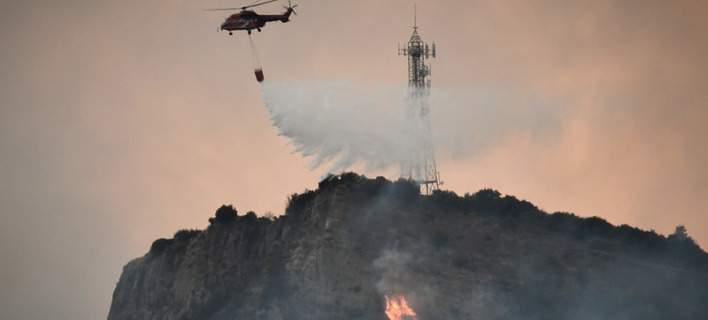 Μάχη με τις φλόγες στην Αμαλιάδα – Υπό έλεγχο η πυρκαγιά στη Δαφνιώτισσα