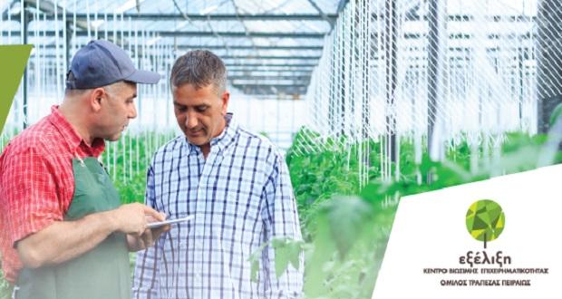 «Επιχειρηματικός Σχεδιασμός για αγροτικές επιχειρήσεις»: Ειδικό σεμινάριο για αγρότες στην Ιεράπετρα στις 12 Οκτωβρίου από την «Εξέλιξη»