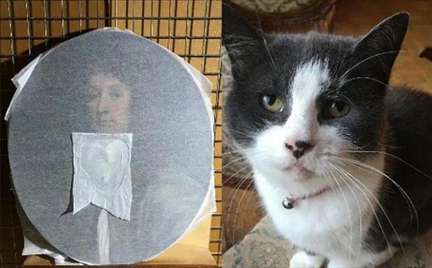 Ελπίζουμε η τιμωρία της γατούλας να μην ήταν τόσο αυστηρή