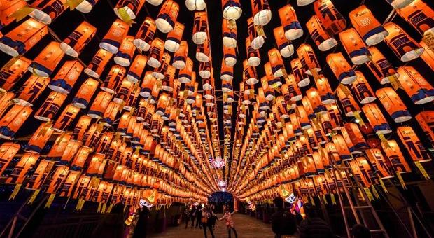 Κινεζική Πρωτοχρονιά: H χρονιά του χοίρου