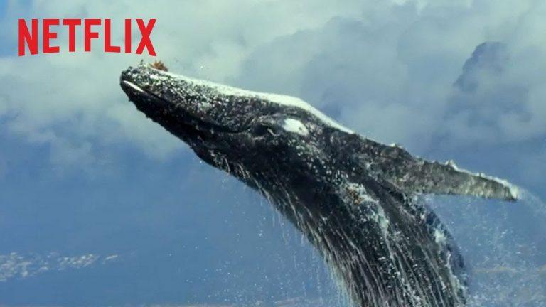 """Το Netflix κυκλοφορεί τρέιλερ μεγάλης διάρκειας για τη σειρά ντοκιμαντέρ """"Ο Πλανήτης μας"""""""