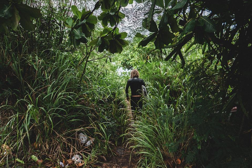 Γίναμε μια ζούγκλα θηρίων…