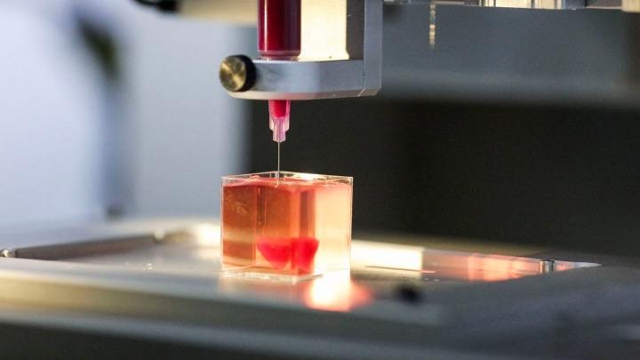 Πρωτότυπο ανθρώπινης καρδιάς τρισδιάστατης εκτύπωσης από ανθρώπινο ιστό
