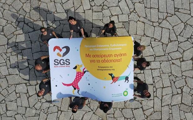 «Με αστείρευτη αγάπη για τα αδέσποτα» – Η SGS και τα πρατήρια BP συμπράττουν για 2η φορά για καλό σκοπό