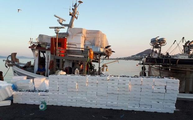 Αλιευτικός έλεγχος και κατάσχεση 2.288 κιλών αλιευμάτων στη Νάξο
