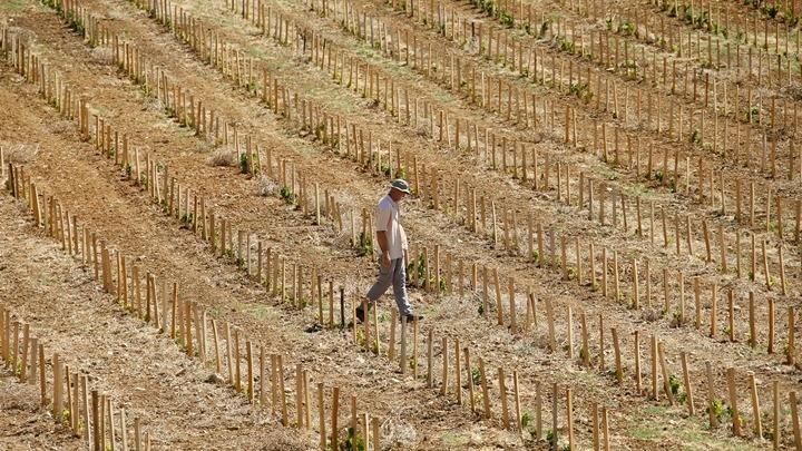 Η Ελλάδα σε δυνητικό κίνδυνο ερημοποίησης