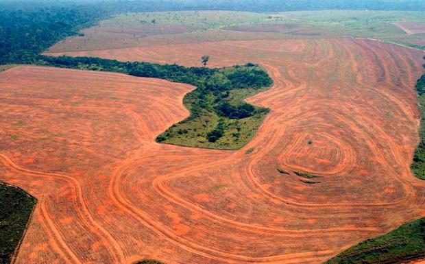 Ο εφιάλτης της περιβαλλοντικής κρίσης είναι εδώ!