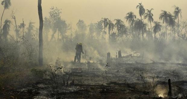 Ο Αμαζόνιος φλέγεται: Σε κίνδυνο ο «πνεύμονας» του πλανήτη