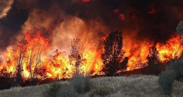 Η πληγή των δασικών πυρκαγιών είναι ένας χρόνιος εφιάλτης για την Πορτογαλία