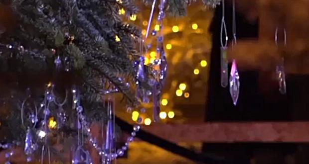 Ποια ευρωπαϊκή πόλη στόλισε δέντρο με 3.000 κρύσταλλα Swarovski