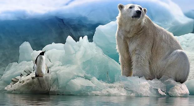Η κλιματική αλλαγή απειλεί τη θαλάσσια ζωή και τον άνθρωπο