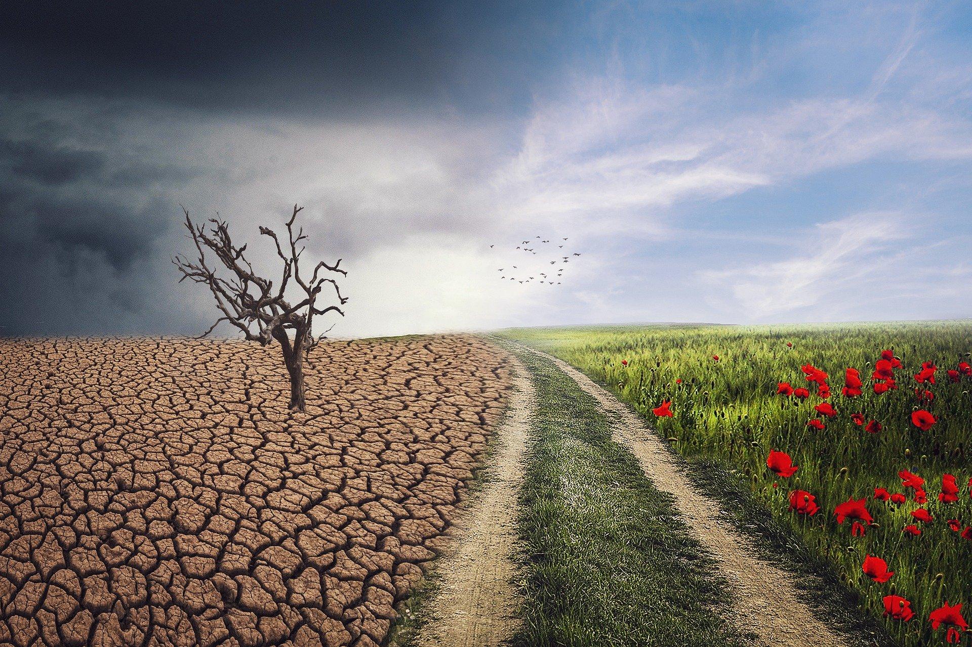 Ζερεφός – Κλιματική αλλαγή: Ποιες περιοχές της Ελλάδας απειλούνται με υποβάθμιση