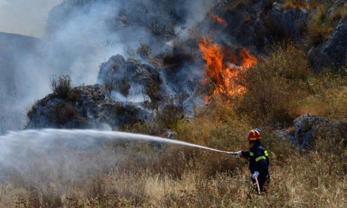 Ζάκυνθος – φωτιά: Τεράστια η οικολογική καταστροφή!