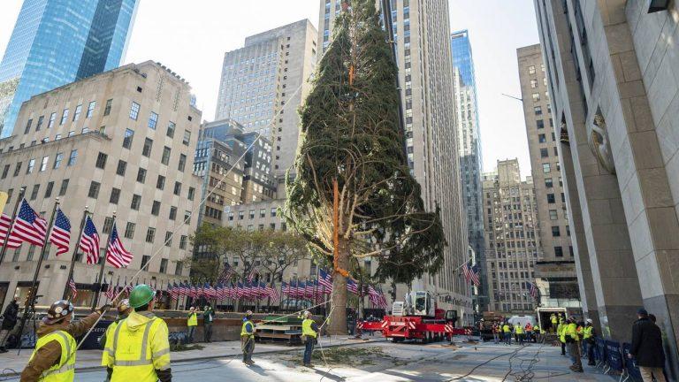 Νέα Υόρκη: Το Χριστουγεννιάτικο δέντρο της πόλης… απαντάει (φωτο)