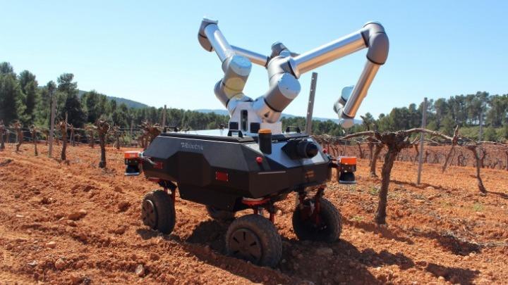 «BACCHUS»: Τον Ιούλιο «πατάει» σε αμπελώνα, το δίχειρο ρομπότ τρύγου που αναπτύσσεται στο πλαίσιο ερευνητικού έργου