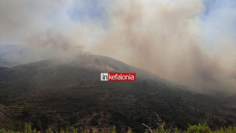 Μέσα στο Καπανδρίτι οι φλόγες της φωτιάς – Ισχυρή δύναμη της Πυροσβεστικής – 7 αεροσκάφη στη μάχη