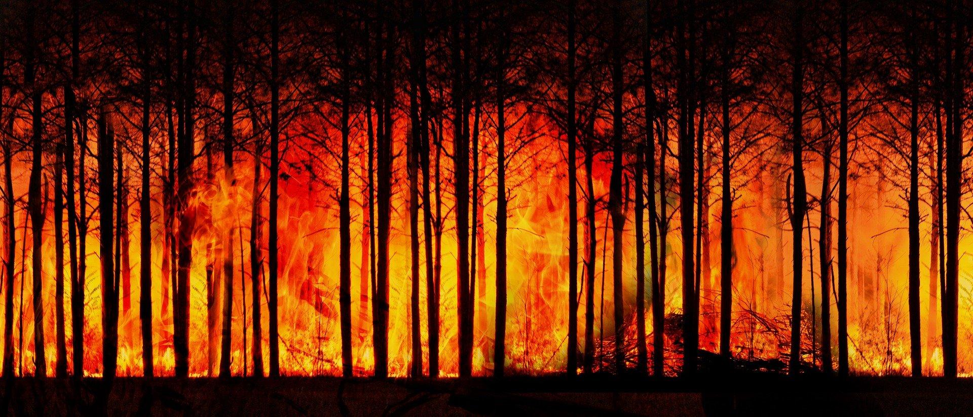 ΟΗΕ: Η άνοδος της θερμοκρασίας στον πλανήτη επιταχύνεται