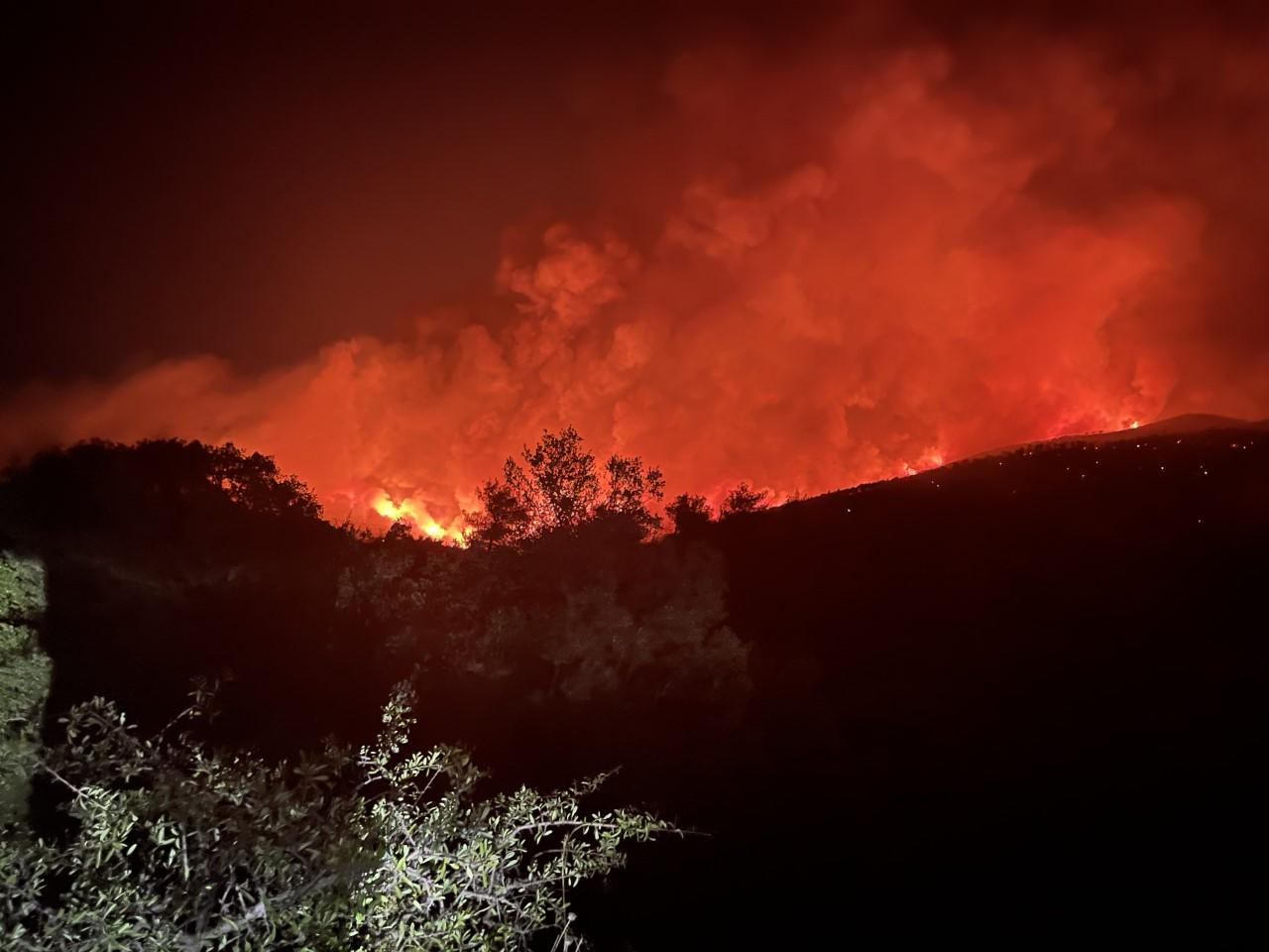Γερμανός πυροσβέστης: Τι συνάντησα στις φωτιές στην Ελλάδα – Στην Ελλάδα η παροχή νερού λειτουργεί διαφορετικά