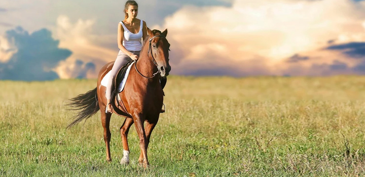 Τα σύγχρονα άλογα εξημερώθηκαν πριν 4.200 χρόνια στις στέπες Πόντου – Κασπίας του Β. Καύκασου